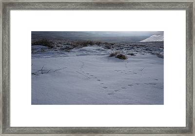 Tracks Framed Print by Riley Handforth