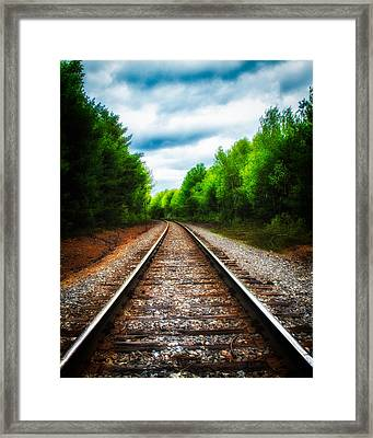 Tracks Through The Woods Framed Print by Bob Orsillo