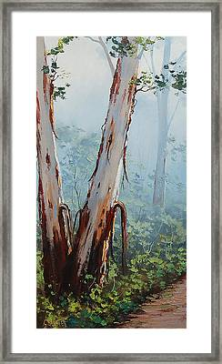 Trackside Gums Lithgow Framed Print