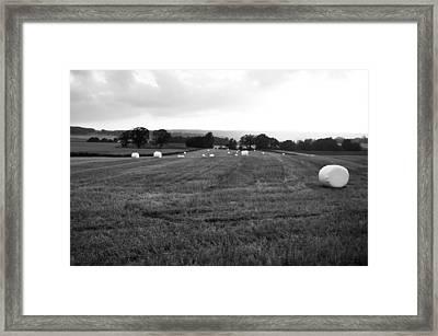 Tractor Eggs Framed Print by Randi Grace Nilsberg
