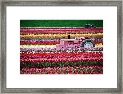Framed Print featuring the photograph Tractor Races by Brian Bonham