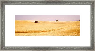 Tractor, Wheat Field, Plateau De Framed Print