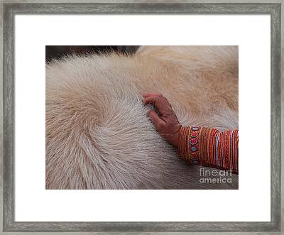 Trading Cattle Framed Print