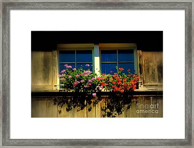 Traditions Live On In Switzerland Framed Print by Susanne Van Hulst