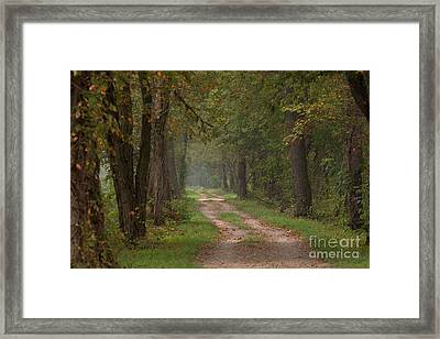 Trail Along The Canal Framed Print