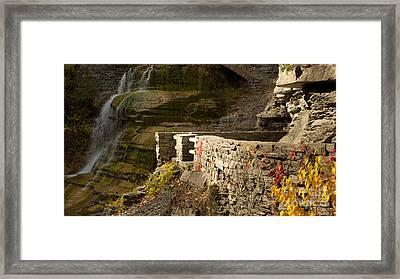 Trail At Treman Framed Print