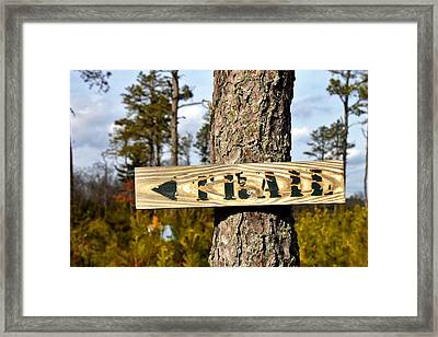 Trail Framed Print