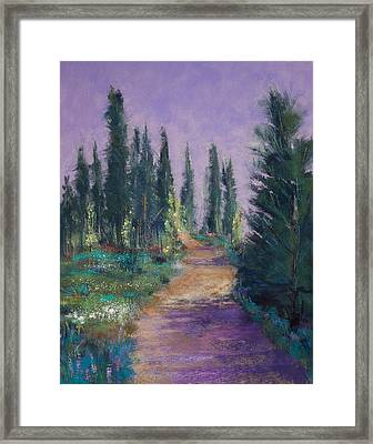 Trail In The Woods Framed Print