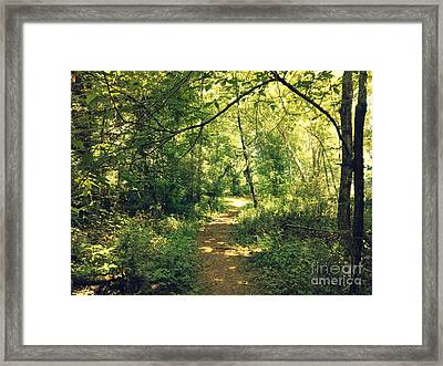 Trail Of Hope II Framed Print