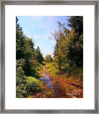Trail Of Hope Framed Print