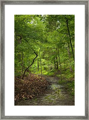 Trail Of Tears Mantle Rock Entrance Framed Print by Lena Wilhite