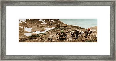 Trail Ride Two Framed Print