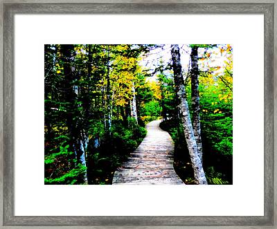 Trail To Autumn Framed Print by Zinvolle Art