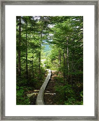 Trail To Sandy Stream Pond Framed Print