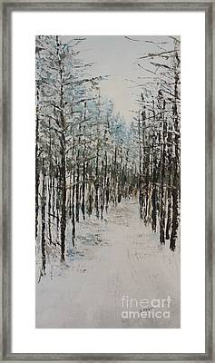 Trail To The Wood Lot Framed Print by Steve Knapp