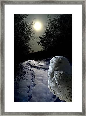 Trail Watch Framed Print