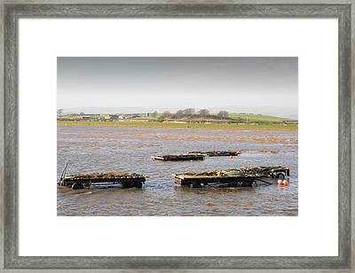Trailers Covered By Flood Water Framed Print by Ashley Cooper