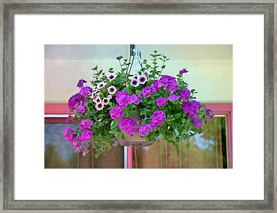 Trailing Petunia Flowers In A Hanging Basket Framed Print by Lanjee Chee