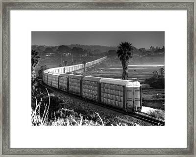 Train At San Elijo Lagoon Framed Print