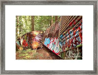 Train Box Cars In The Woods Framed Print by Adam Jewell