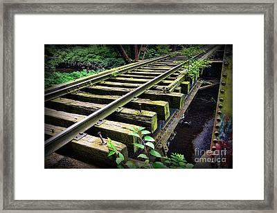 Train - Railroad Trestle Framed Print by Paul Ward
