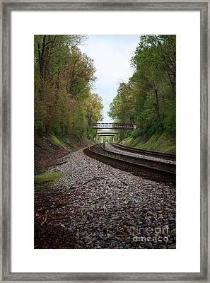 Train Tracks Framed Print by Suzi Nelson