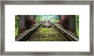 Train Trestle 2 Framed Print