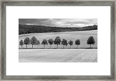 Train With A View Bw Framed Print