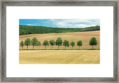 Train With A View Framed Print