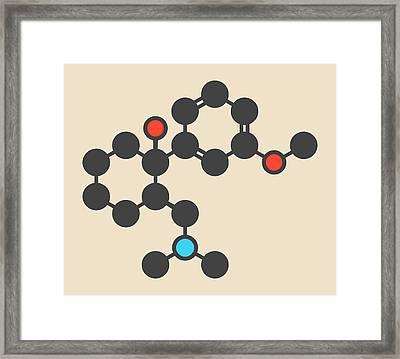 Tramadol Opioid Analgesic Drug Molecule Framed Print