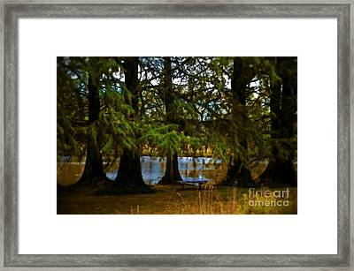 Tranquil And Serene Framed Print