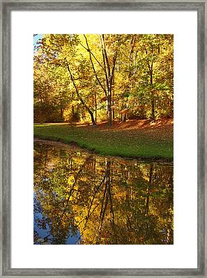 Tranquil Autumn Framed Print