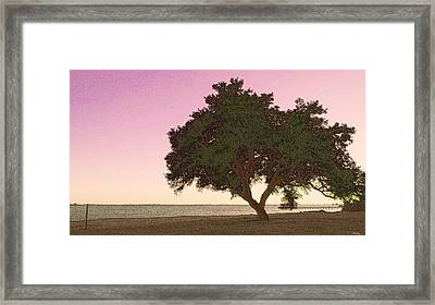 Tranquil Florida Bay Framed Print by Glenn McCarthy Art and Photography