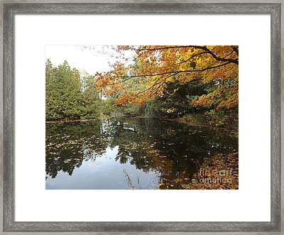 Tranquil Getaway Framed Print by Brenda Brown