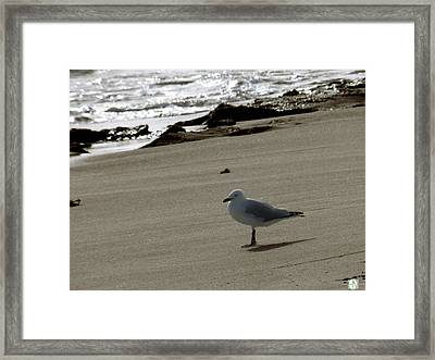 Tranquil Framed Print by Henry Nguyen