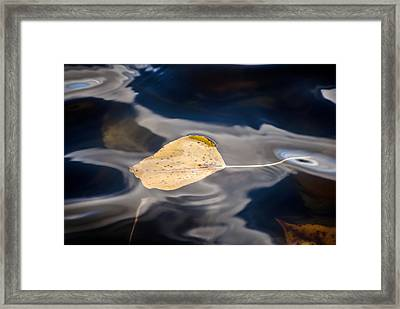 Tranquil Framed Print by Jessica Tookey