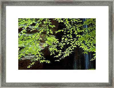 Framed Print featuring the  Tranquil by Haren Images- Kriss Haren