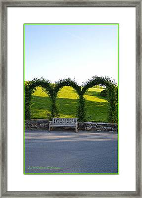 Tranquil Moment Framed Print by Sonali Gangane