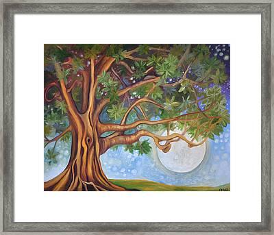 Tranquil Moonlight Framed Print by Cedar Lee