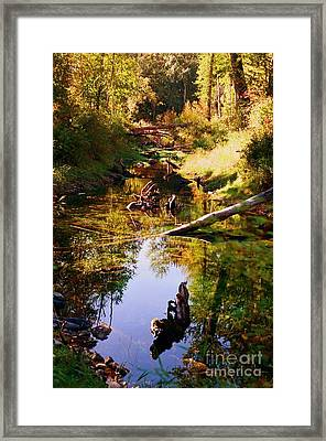 Framed Print featuring the photograph Tranquil Space by Kathy Bassett