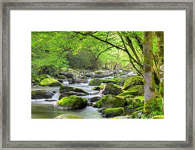 Tranquil Waters Framed Print by Mary Anne Baker