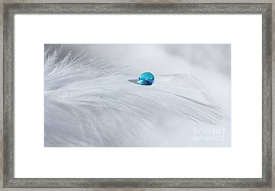 Tranquil Winter Day Framed Print