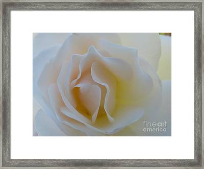 Tranquility  Framed Print by Anat Gerards