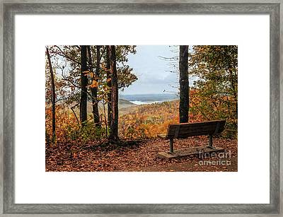 Framed Print featuring the photograph Tranquility Bench In Great Smoky Mountains by Debbie Green