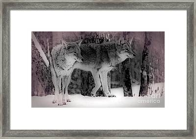 Framed Print featuring the photograph Tranquility by Bianca Nadeau