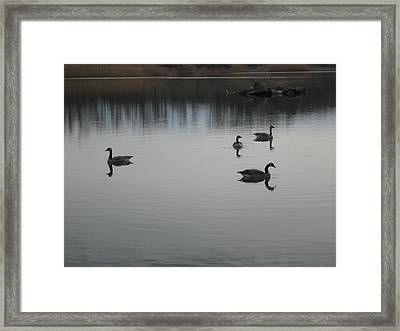 Tranquility Framed Print