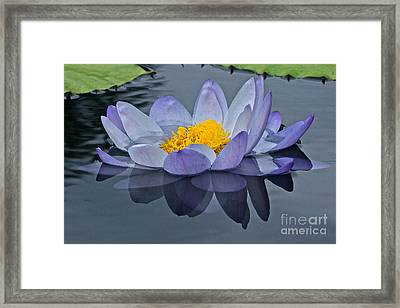 Tranquility Framed Print by Byron Varvarigos