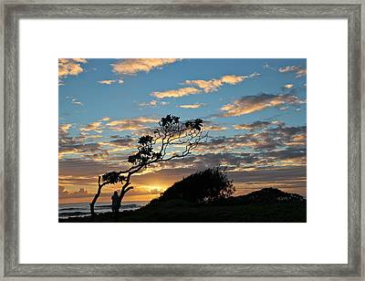 Tranquility Framed Print by Kimberly Davidson