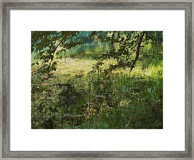 Tranquility Framed Print by Mary Wolf