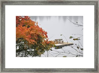Tranquility Framed Print by Tanya  Searcy